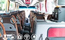 bolgariya-avtobus-3